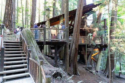 Capilano Suspension Bridge tree house