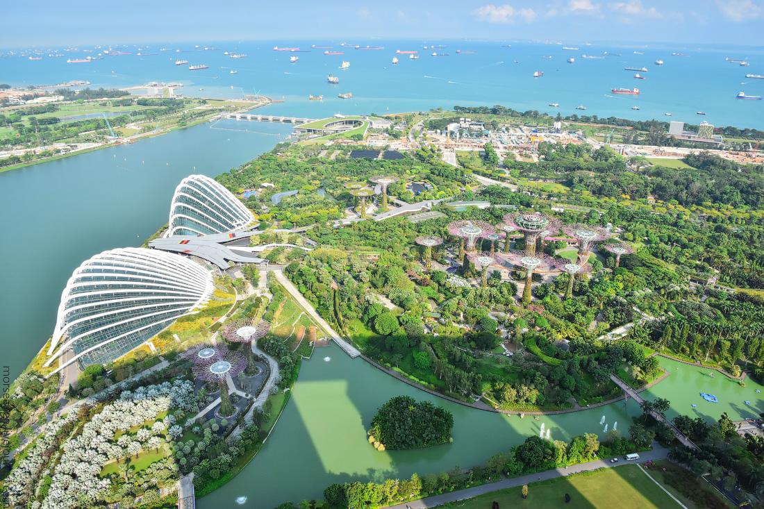 Singapore-(1)