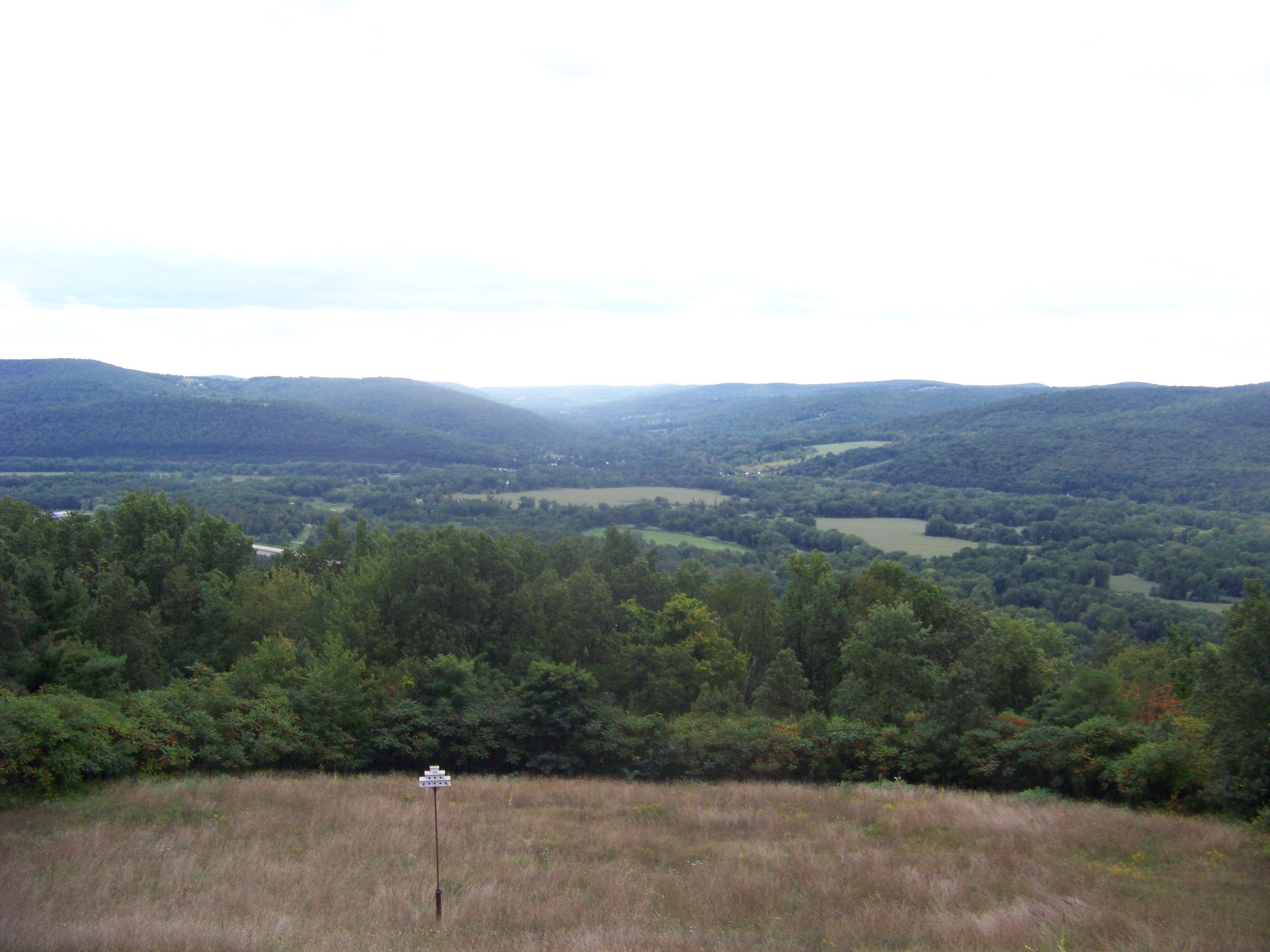 The view from the summit of Sullivan Hill -- site of the Battle of Newtown -- looking into Hoffman Hollow. Photo taken on September 7, 2008.