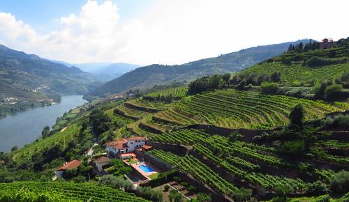 Vallée du Douro - Douro Valley, Portugal