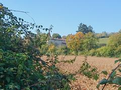 DSC_0205 - Photo of Lozanne