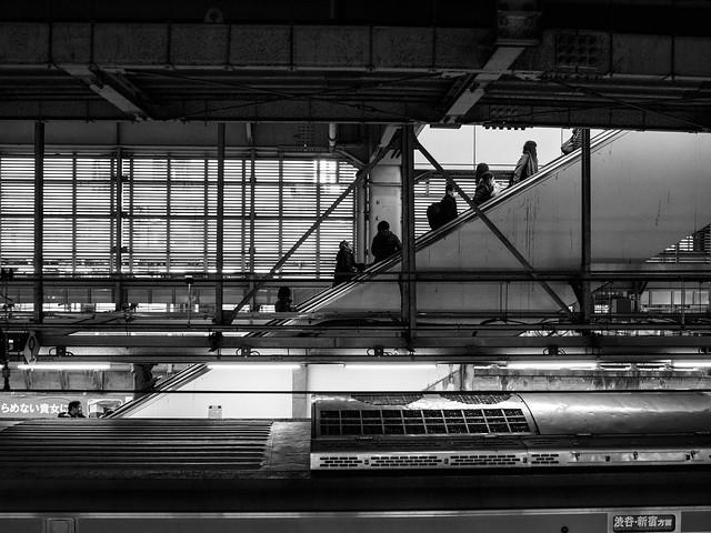 Tokyo, Japan, 2017, Olympus E-M5MarkII, Sigma 19mm F2.8 DN | A