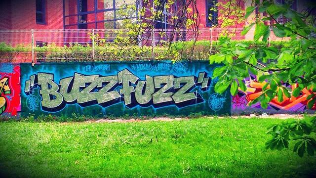 buzzfuzz