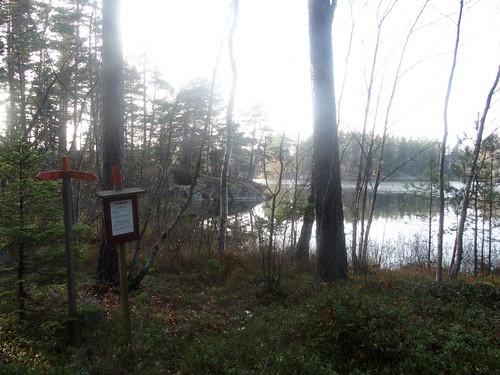 SÖ E49 Holmsjön 1