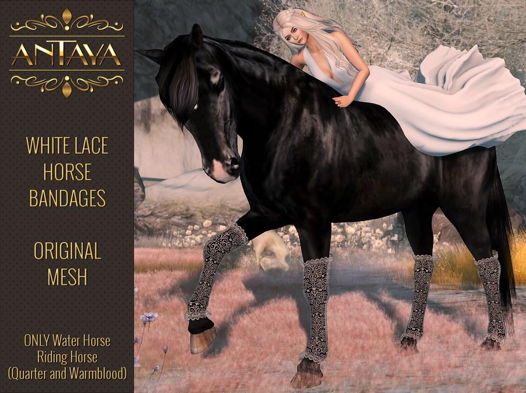 :: ANTAYA :: WHRH Horse lace bandages