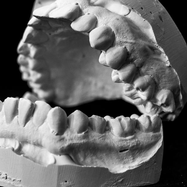 Dental Mold-3