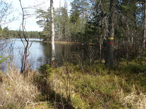 SÖ E13 Holmsjön