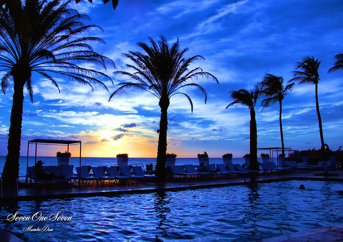 travelphotography nighttime ocean aruba nature pool palmtrees sunsetphotography