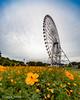 20180913_葛西臨海公園