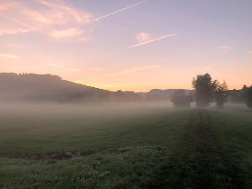 Morgenspaziergang im Wikartswilmoos