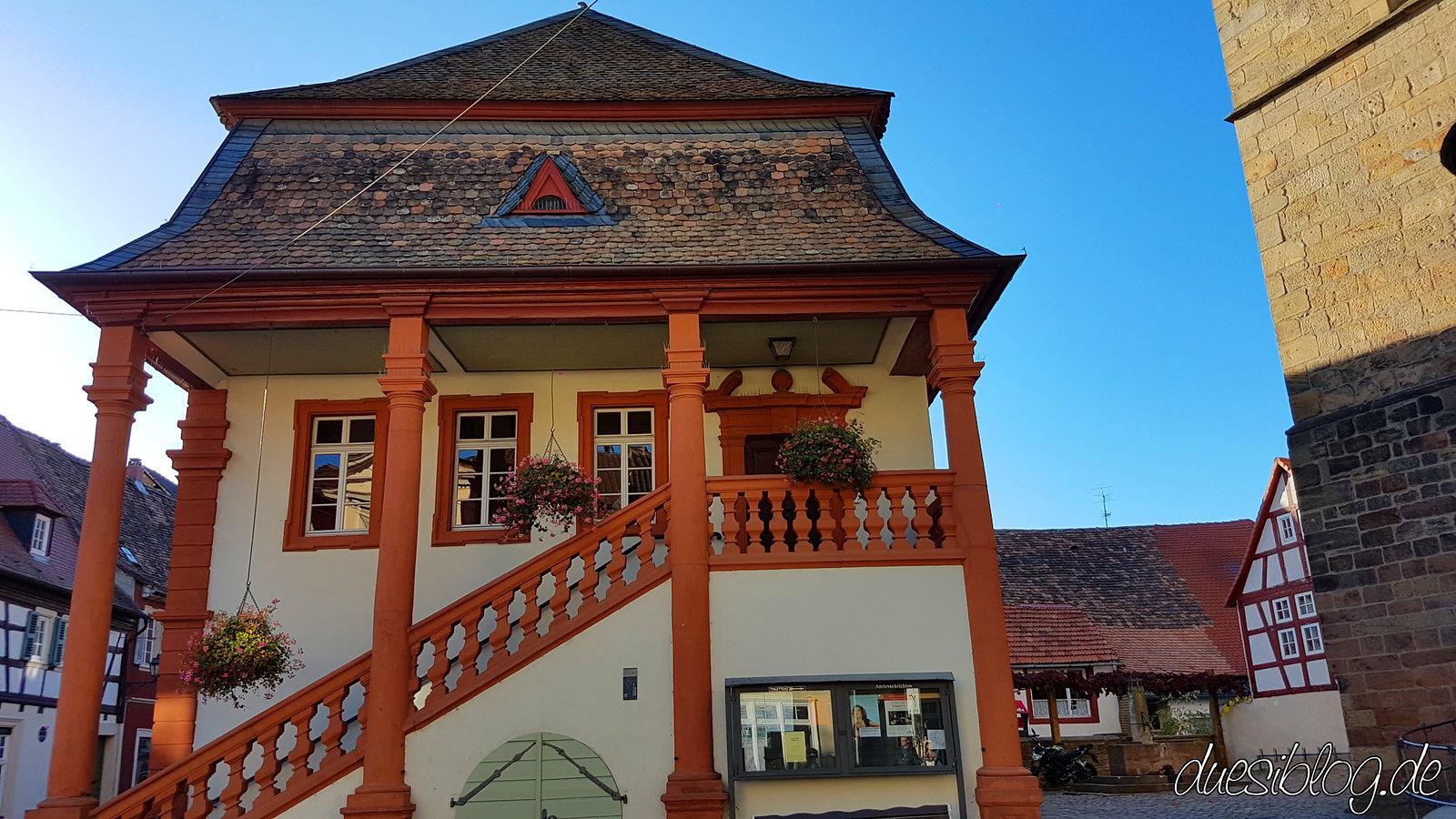 Freinsheim Pfalz duesiblog travelblog 23