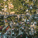 DJI_0131 por bid_ciudades