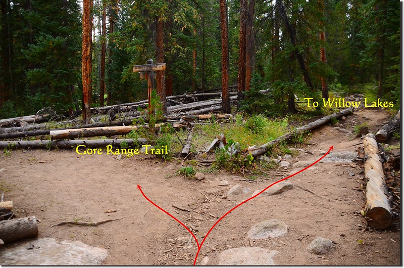 The junction of North Willow Creek Trail & Gore Range Trail