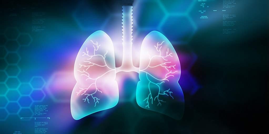 Une enzyme humaine peut biodégrader le graphène