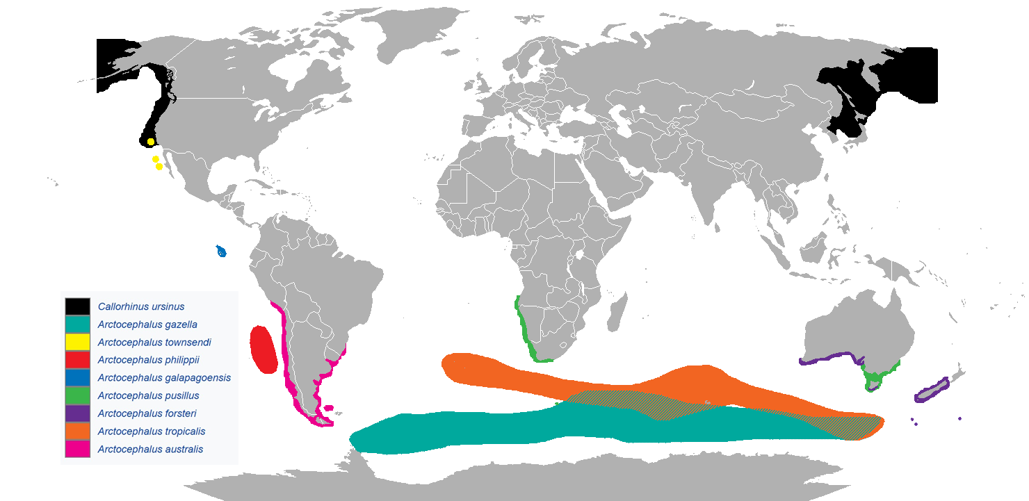Fur seal ranges