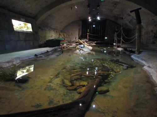 Les aquariums du Château de Bouthéon consacrés au fleuve Loire (XIII - XIXè siècle), Forez, Loire, France