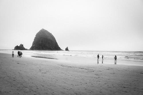 Oregon Coast 2018 -84
