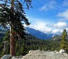 Looking down on Yosemite Valley, CA 2015