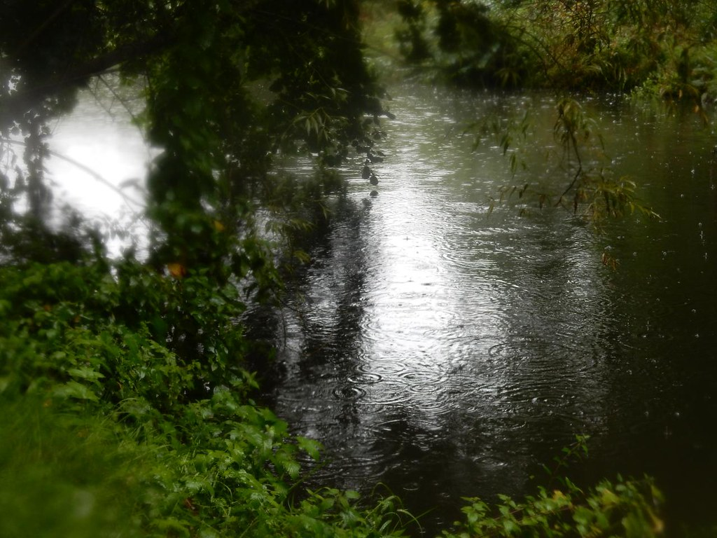 Wet day along the Wey Wanborough to Godalming