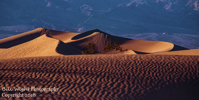 Death Valley Sand Dunes Early Morning