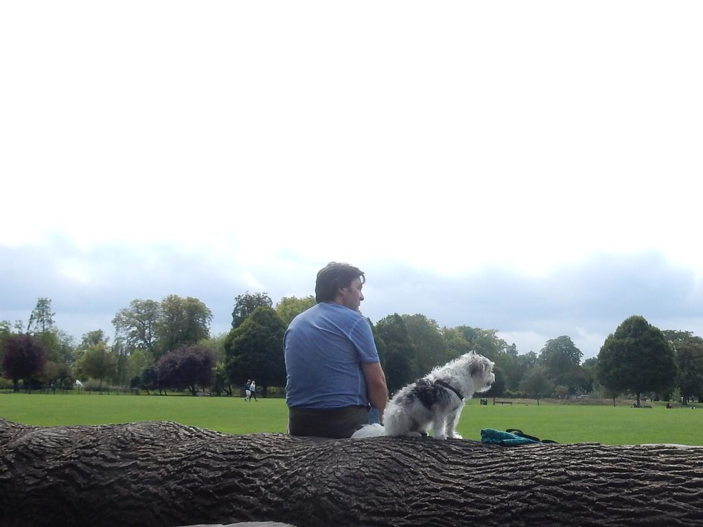 Dog on a log - Clissold Park Woodberry Wetlands - Stoke Newington Reservoirs
