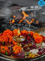 300 and 500 Hour Yoga Teacher Training Welcome Ceremony, AYM Yoga School, Rishikesh, India