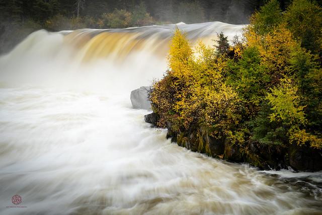 Pisew in Autumn West
