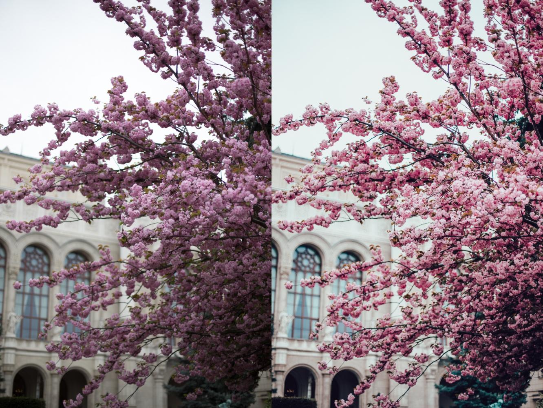annnye presets lightroom preset valokuvaus-3-side