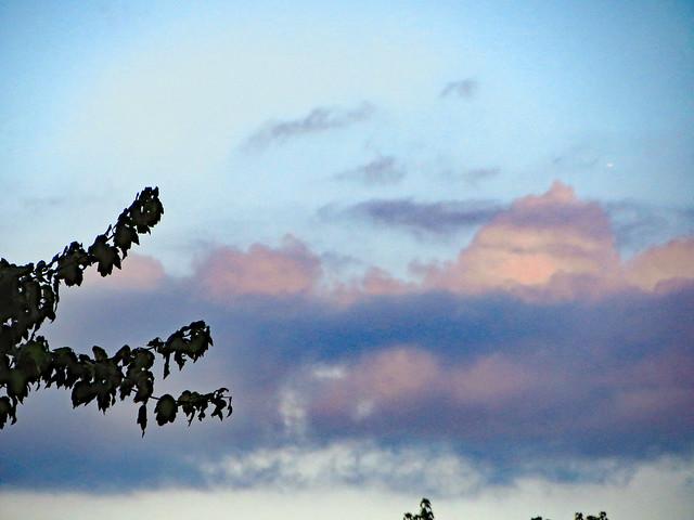 Evening Sky., Canon POWERSHOT ELPH 520 HS