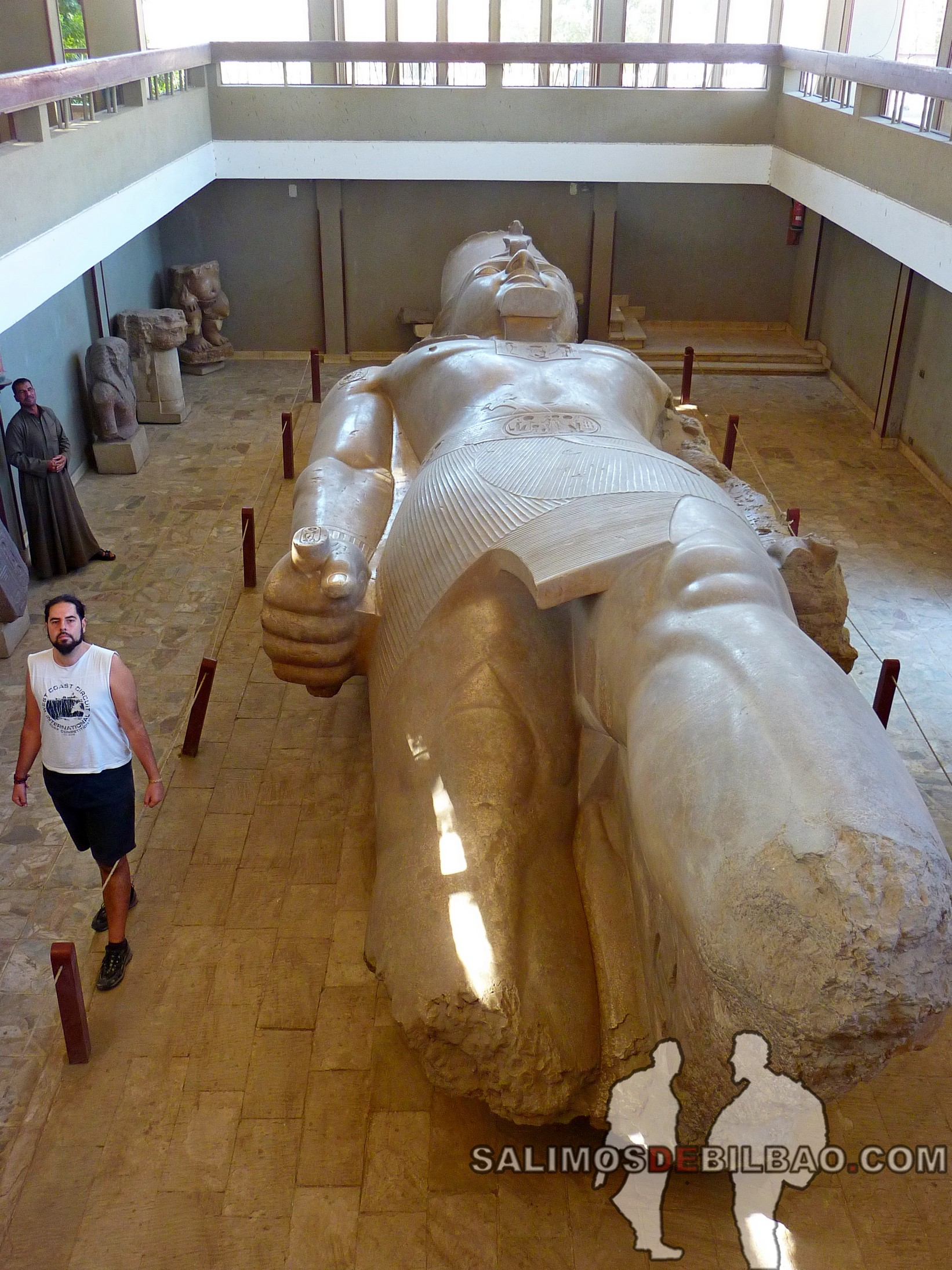 0367. Katz, Coloso de Ramses II, Museo de Mit Rahina, Memphis