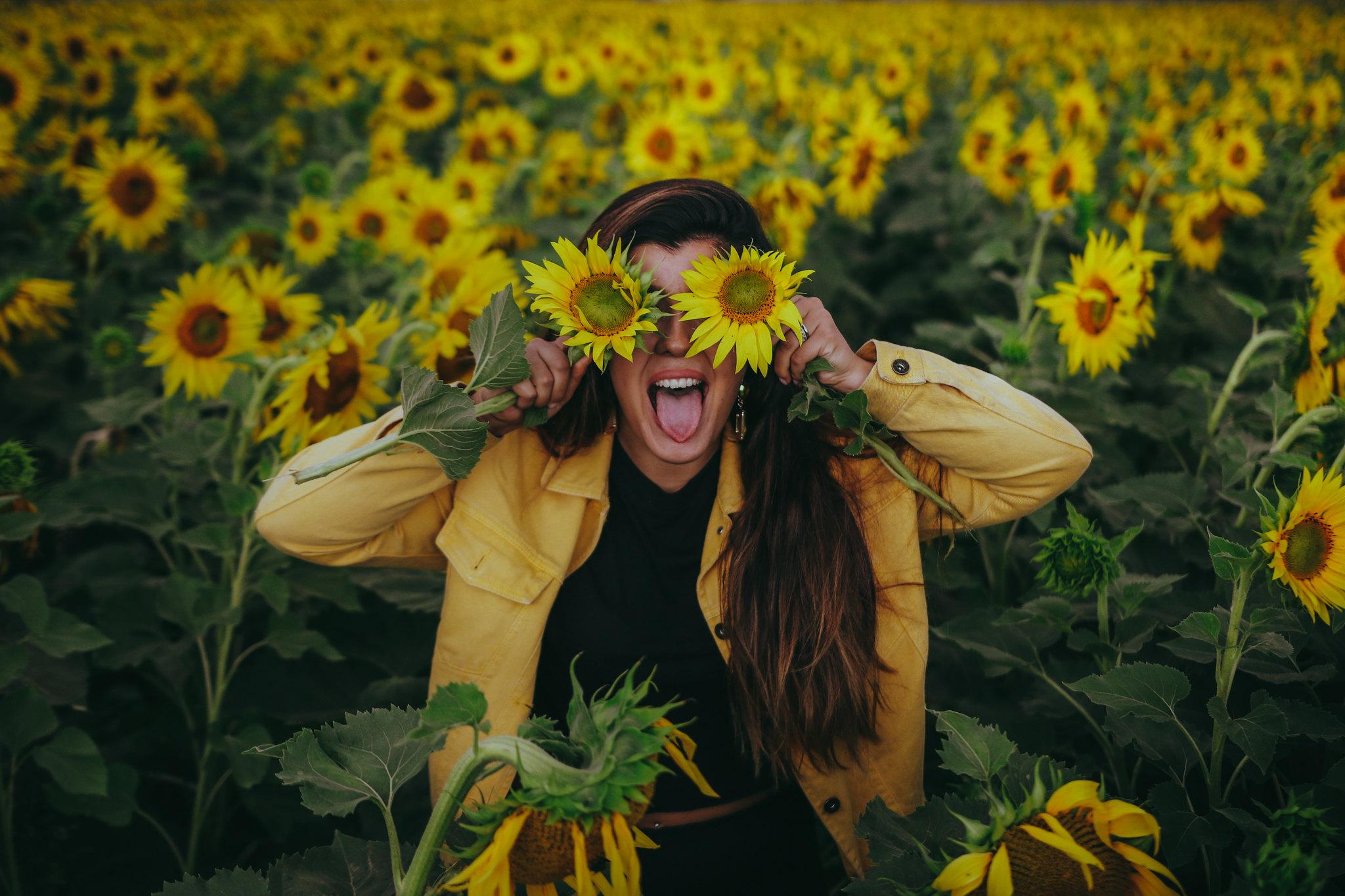 auringonkukkia-27