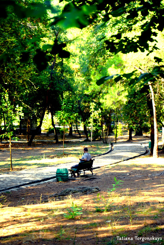 Отдых в Городском парке
