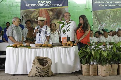 Casa Abierta: Desarrollo de la cadena del cacao