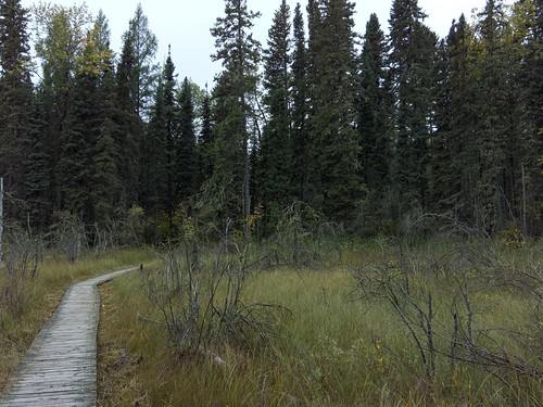 Prince Albert National Park: Waskesiu River Trail | by elmada