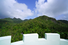 El Yunque National Forest from Yocahu Tower, Puerto Rico