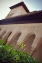 Les Jardins de l'Alhambra Bokeh