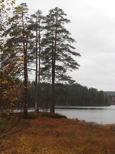 BR E21 Malingsbosjön3
