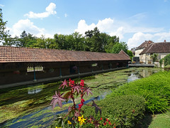 Watermill and lavanderie (washing place) in Ligny-le-Chatel - Photo of La Chapelle-Vaupelteigne