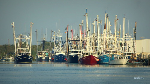 Cape May Fishing Fleet -- EXPLORED