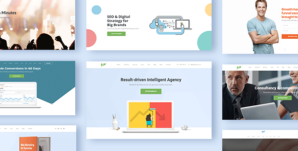 Marketing Pro v2.6 - SEO WordPress Theme for SEO, Agency