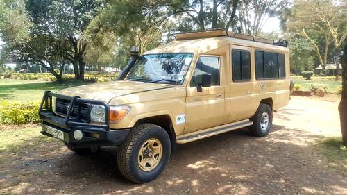 kenya safari somakholidays 肯亞 獵遊