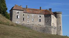 Château de Ray sur Saône