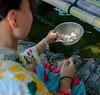 Photo:#神社フォトコンわたしと神社 #川越熊野神社 ・ 3年ぶりにに #川越 へ相方さんと一緒に行ってきました😆 とにかく暑かったw 神社の温度計でこの時すでに38度💦 _ でも、ジャバジャバと水がでてる #熊野神社 系内の #銭洗弁天 は少し涼しかったような気がします。 ・ #神道青年全国協議会 で募集しているインスタグラム神社 #フォトコンテスト 「 #わたしと神社 」ってのがあるそうで、私も投稿😆_ _______ #埼玉県 #川越市連雀町 #厳 By Gaku@STUDIO-Freesia