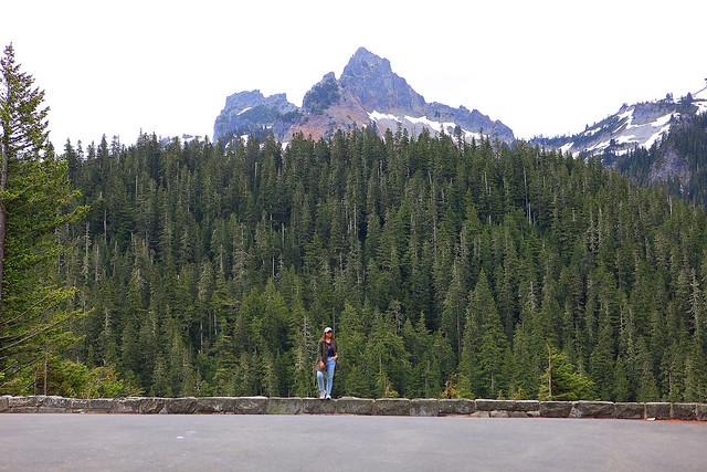 Mount Rainer Tanvii.com