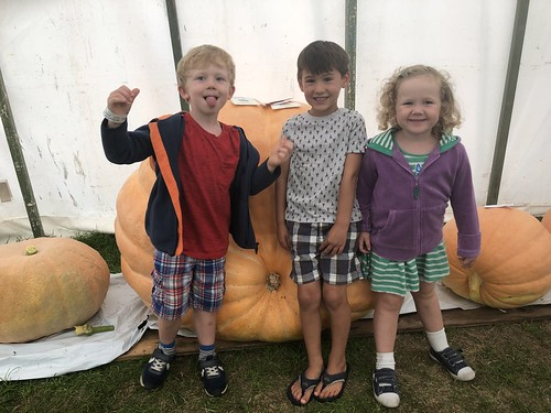 North Show Pumpkin