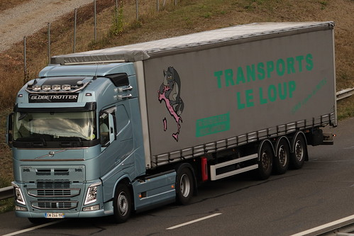Volvo FH 500 - Transports Le Loup - FR