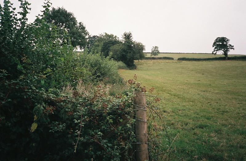 Where Hengrove Brook should run