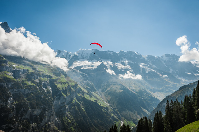 Alpine Gliding
