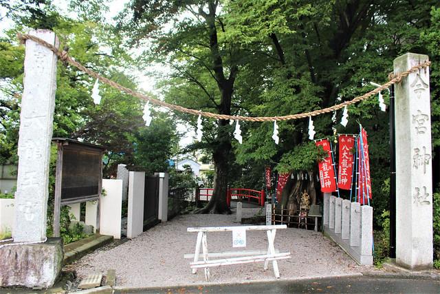 chichibuimamiya001