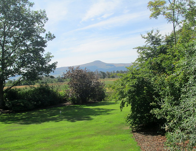lawn and East Lomond